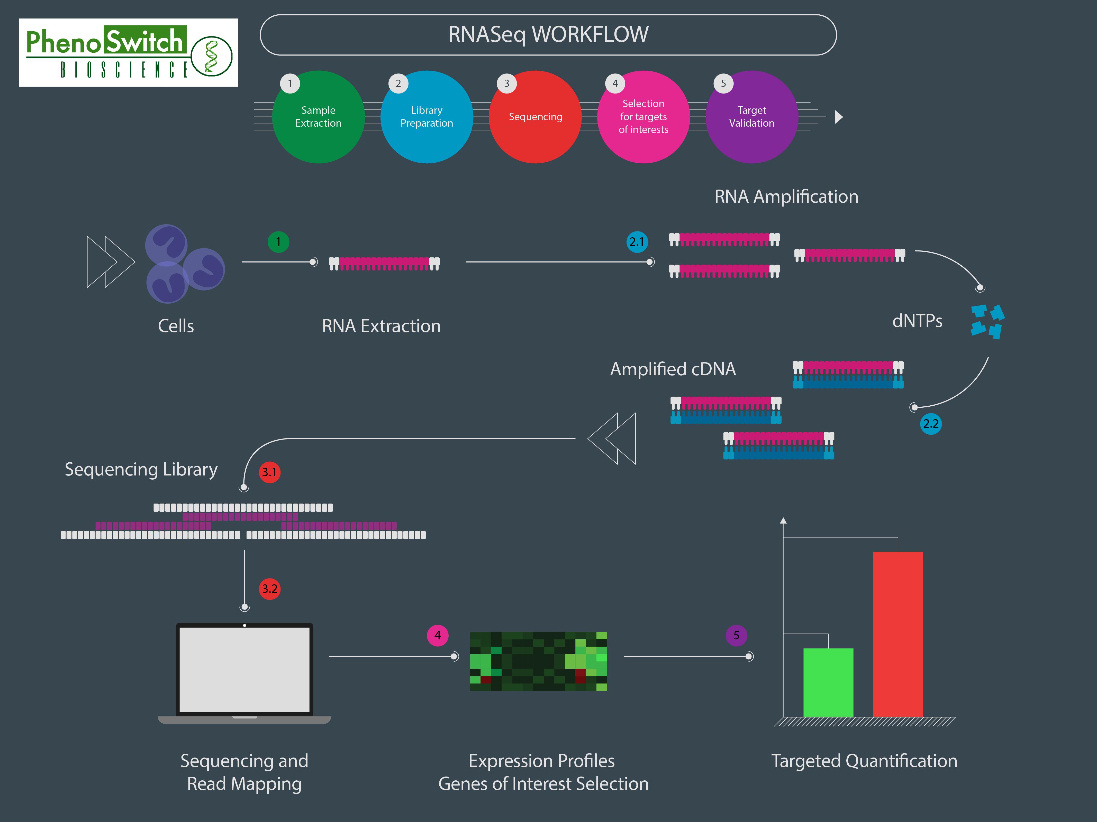 SWATH acquisition workflow