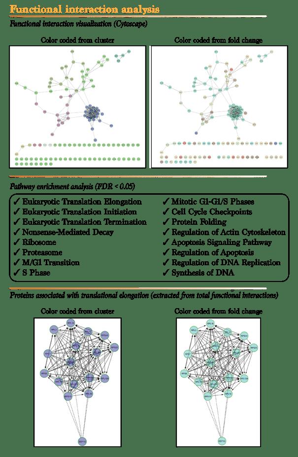 Mass spectrometry proteomics services gene ontology